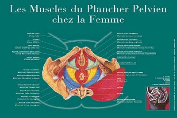 site de rencontres los angeles Clermont-Ferrand