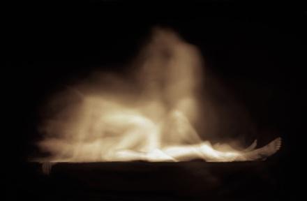 Image extraite de la série Coït de Frédéric Delangle, 2006 www.fredericdelangle.com