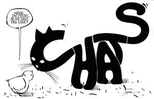 mot chat